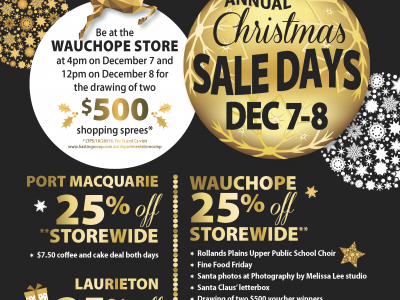 Department Store Annual Christmas Sale Days
